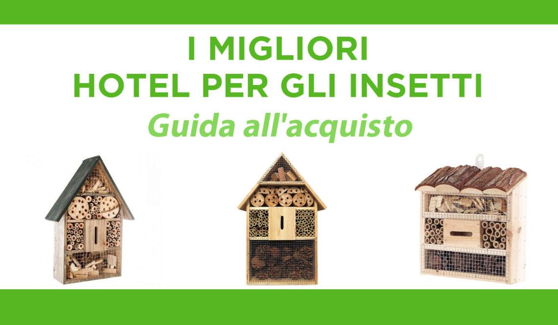 migliori hotel per gli insetti