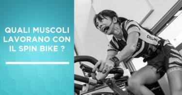 qual muscoli lavorano spin bike